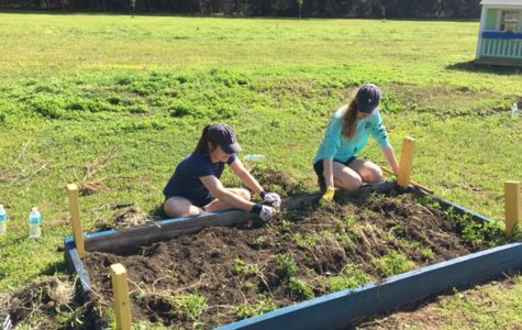 During the spring break mission trip to South Carolina, seniors Caroline Steiger and Sarah Fletcher help clear a gardening plot for the students at Freierson Elementary