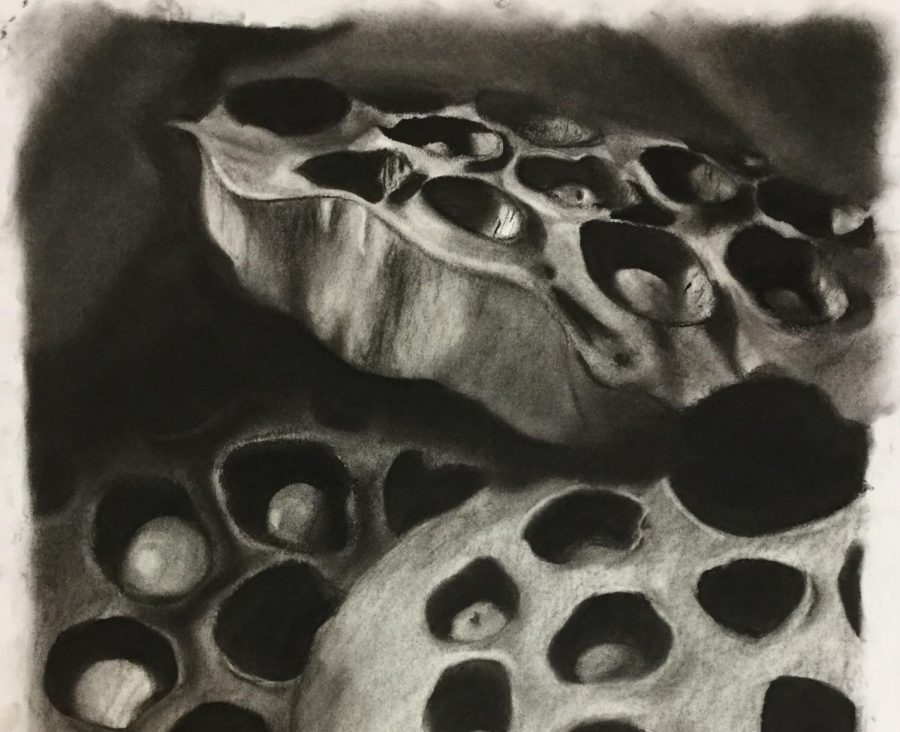 Jade Miller's art will be displayed at two public venues later this school year. This is a cropped image of her complete work.