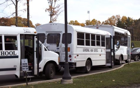 Drivers often pass stopped buses, director says