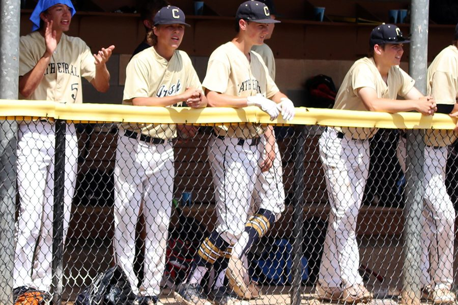 Potential baseball players are invited to a callout meeting on Nov. 27.