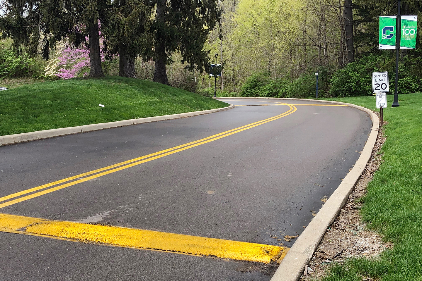 The speed bumps on the Hill are typically replaced every year.