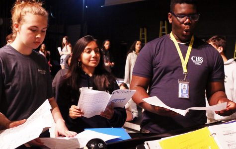 Freshman makes significant performing arts impact