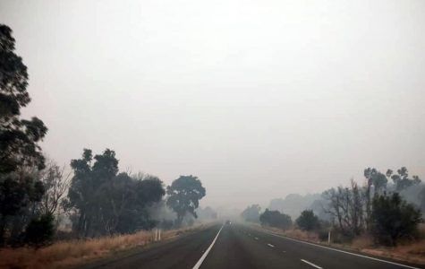 Smoke and haze cover a road in Australia during the recent fires. The son of theology teacher Mrs. Rebecca Heger provided the photo.