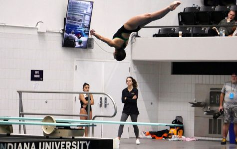 Senior Sophie Mernitz finished eighth in the one-meter diving competition at the State swimming and diving meet on Feb. 15.