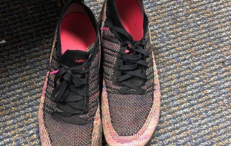 Earlier this school year, Mrs. Angela McGruder sent an email with this image trying to track down the owners of these shoes. At least both the left and right shoe had been turned in. That is not always the case.