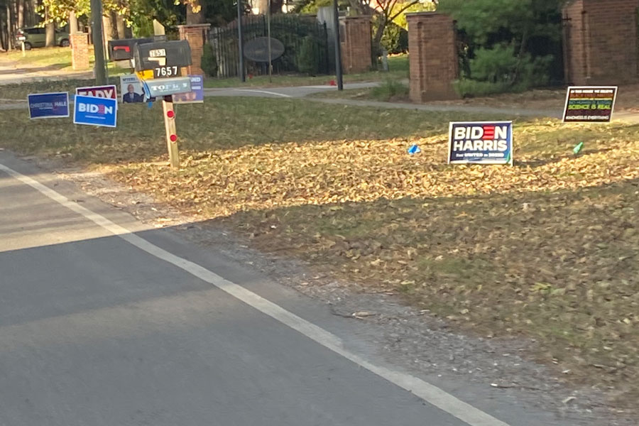 Political signs are displayed in yards at Dean Road and Royal Pine Boulevard.